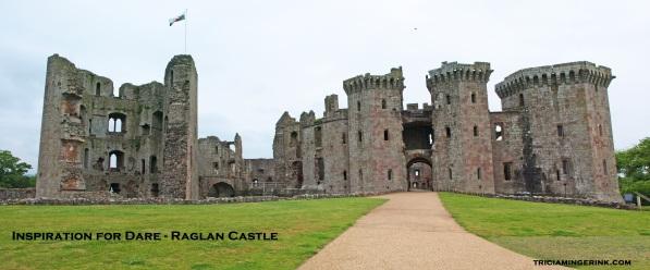 Raglan Castle Blog Post