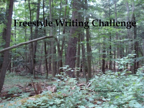 Michigan Woods Freestyle Writing Challenge